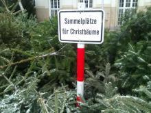 Schild Sammelstelle Christbäume