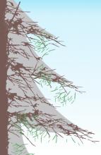 Tannenbaum Silhouette